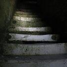 TAKE A STEP... by June Ferrol