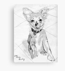 Papillon Pup Canvas Print