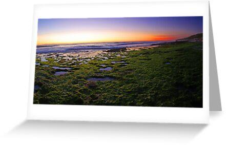North Beach At Dusk  by EOS20
