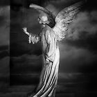 Angel at My Door by olga zamora