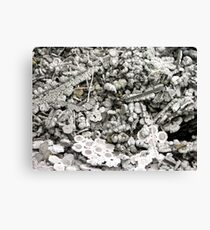 Smelting Product Canvas Print