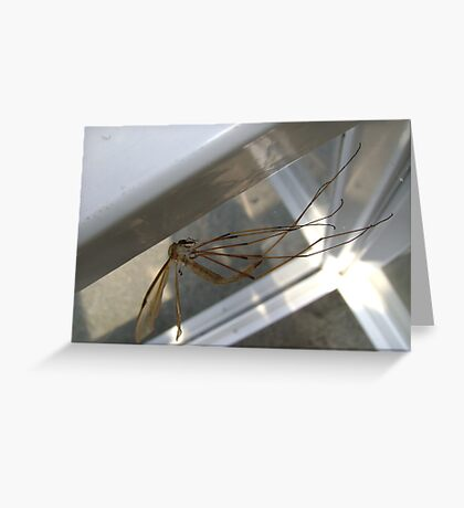 weightless (Cranefly) Greeting Card
