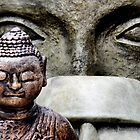 Buddha & friends... by Laurie Minor