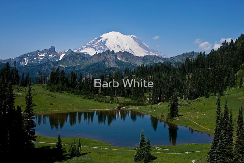Quot Mt Rainier And Tipsoo Lake Mt Rainier National Park