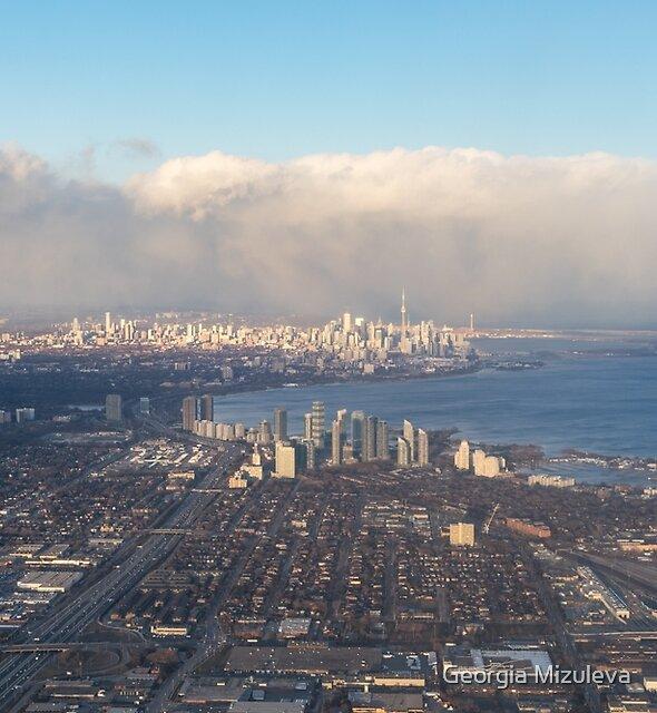 On Approach - Flying Over Toronto by Georgia Mizuleva