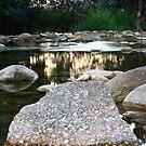 Harvey Creek by Ron  Wilson