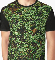 Texture vines with brick wall red bricks climbing green jungle vines and wild plants vintage eroded grunge style urban pattern Graphic T-Shirt