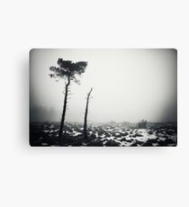 Win Hill Canvas Print