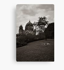 The Place In The Sun Canvas Print