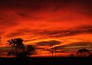 """""""Embers in the Sky"""" by debsphotos"""