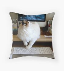 There...That's a Much Better Desktop Photo!! Throw Pillow