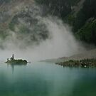 The Mist by Michael Garson