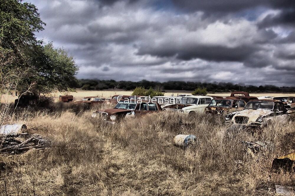 Field Of Forgotten Dreams   ( BoneYard Series ) by Carla Jensen