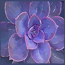 Moody Blues Succulent- by Hxlxynxchxle by PurposelyDesign