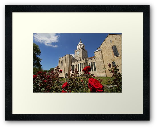 Portsmouth Cathedral by Jonathan Cox