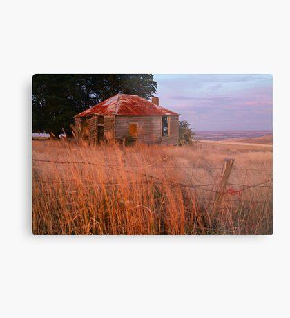 Sunset Glow, Barrabool Hills Metal Print