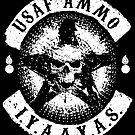 USAF AMMO Skull and Pisspots by bigtimmystyle