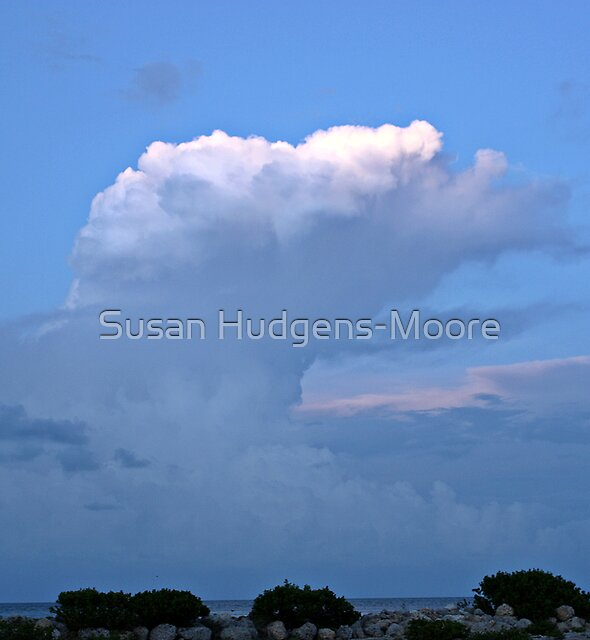 Evening Watch by Susan Hudgens-Moore