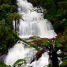Triplet Falls, The Otways by Paul Moore