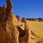 Nambung National Park (The Pinnacles) by lezvee