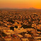 Hermosillo Gold by Richard G Witham