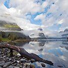 Milford Sound by Darren Newbery