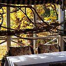 cafe verandah by jayview
