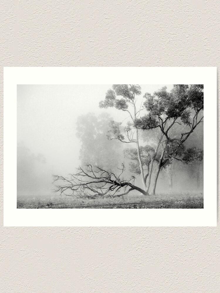 Alternate view of Misty Paddock Art Print