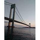 New York, New York City, Brooklyn, #NewYork, #NewYorkCity, #Brooklyn, Verrazano-Narrows Bridge, #VerrazanoNarrowsBridge, #VerrazanoBridge, #bridge, #Verrazano, #Narrows by znamenski