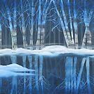 Winter Reflections by Mikki Alhart