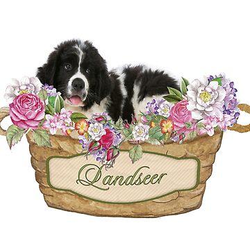 Landseer Puppy by itsmechris
