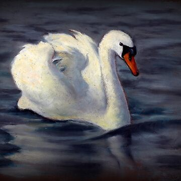 SWAN Swimming, Oil Pastel Painting, Wildlife Art by Joyce