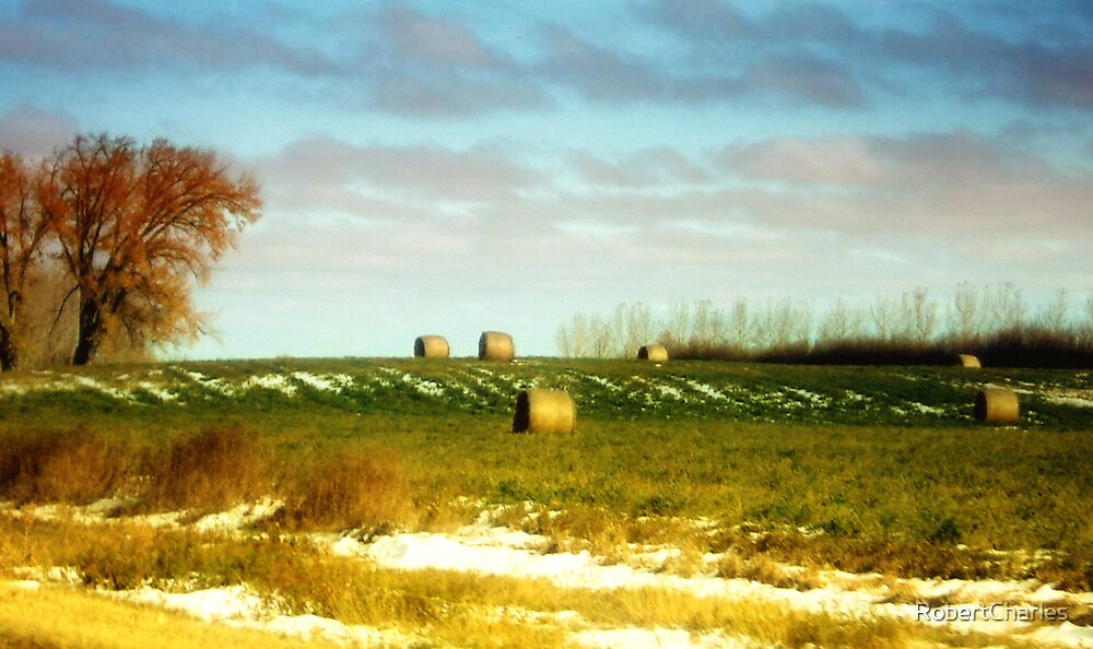 Saskatchewan Harvest by RobertCharles