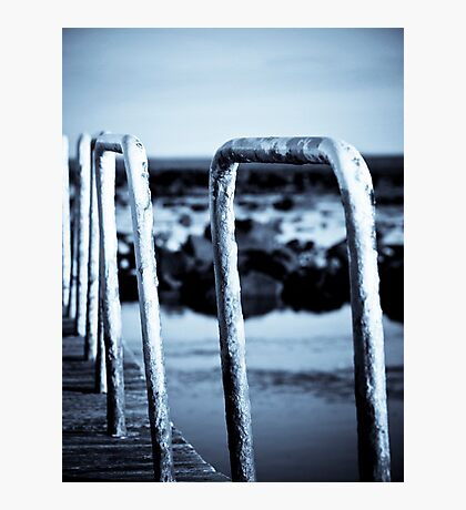 Water Rails Photographic Print