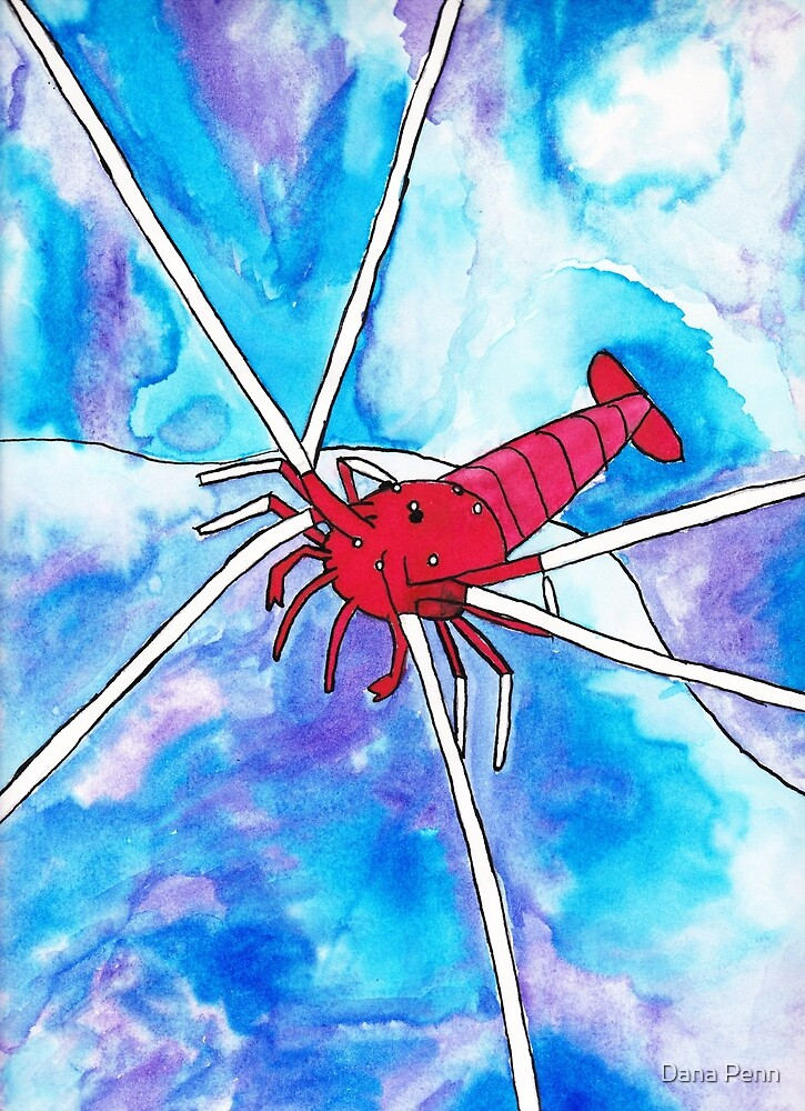 Blood Red Fire Shrimp Watercolor by Dana Penn