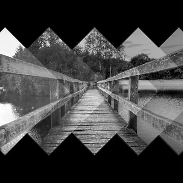 The Bridge - Nature and Geometry in Black and White by ddtk