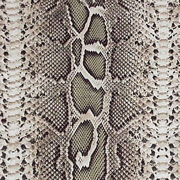 Faux Boa Constrictor Snake Skin Design by Digitalbcon