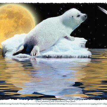 """The Celestial Child"" (Harp Seal) by RavenPrints"