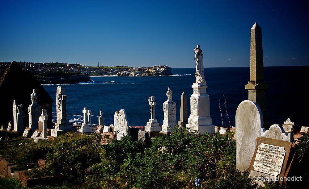 Waverley Cemetery, Sydney, July 2009 by Gayan Benedict