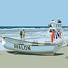 Avalon Beach Patrol by James & Laura Kranefeld
