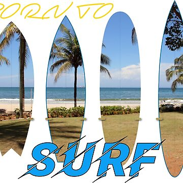 Born To Surf by station360