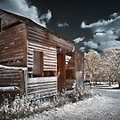 The Old Shed by Ben Ryan