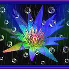 Rainy Bubble Nite by glink