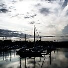 Morning Harbour by Stephen Peters