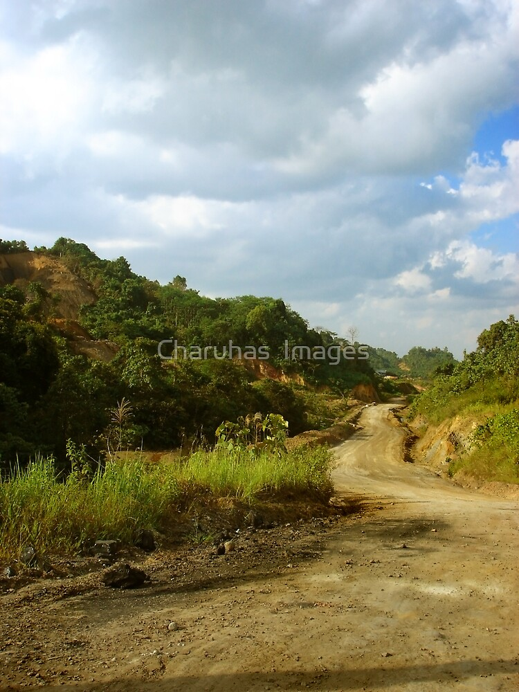 Country Road in Kalimantan, Indonesia by Charuhas  Images