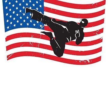 USA Flag Flying Kick by oberdoofus