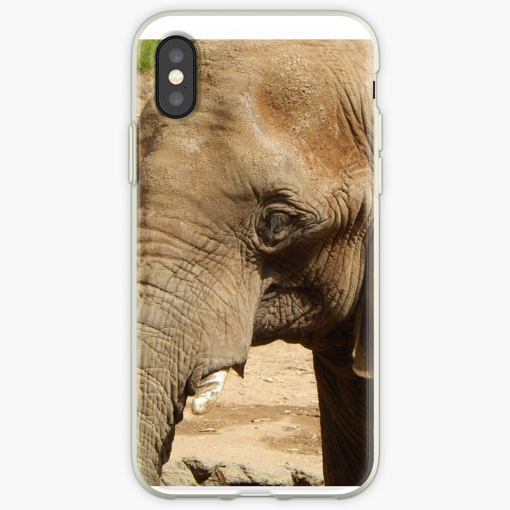 Elefant 005 iPhone-Hülle & Cover