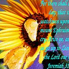 Jeremiah 31:6 by R&PChristianDesign &Photography
