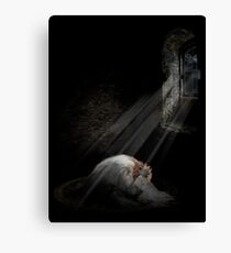 The downfall of the Goblin King Canvas Print