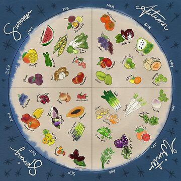 Seasonal Produce Wheel by Penny-Farthing